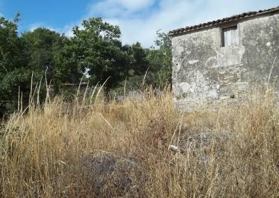 C176-Monterroso-San-Cristobo-18