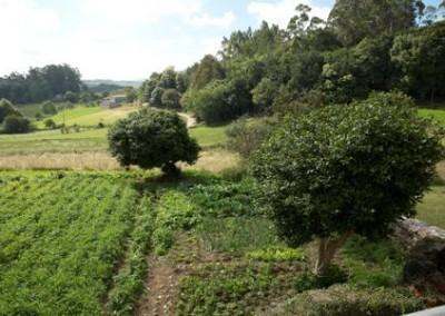 C70-Casa-rustica-Melide-Traspedra-4