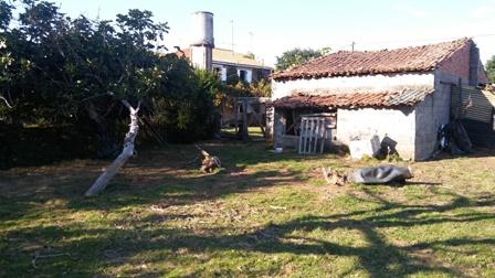 C261 Casa O Riberio, Melide (36)